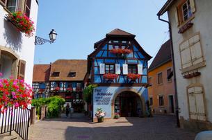 エギスハイム Eguisheimの写真素材 [FYI00221830]