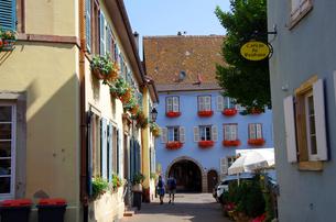 エギスハイム Eguisheimの写真素材 [FYI00221834]