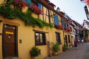 エギスハイム Eguisheimの写真素材 [FYI00221835]