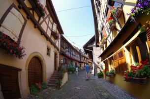 エギスハイム Eguisheimの写真素材 [FYI00221839]