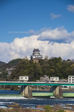 愛知県犬山市、ライン大橋と犬山城の素材 [FYI00221960]