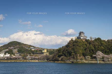 木曽川と犬山城の素材 [FYI00221974]