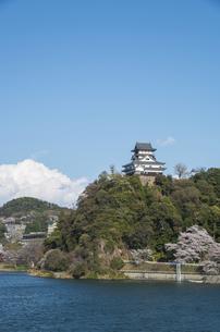 木曽川と犬山城の素材 [FYI00221975]