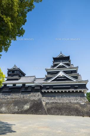 熊本城の写真素材 [FYI00221978]