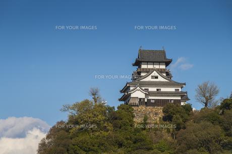 愛知県、犬山城の素材 [FYI00221980]