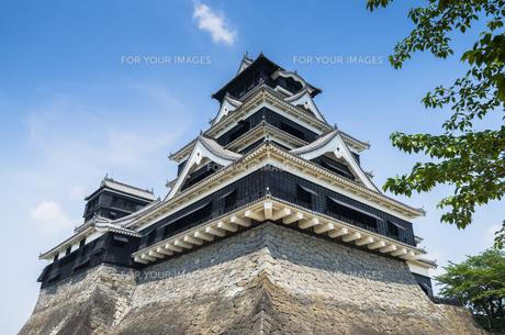 熊本城の写真素材 [FYI00221998]