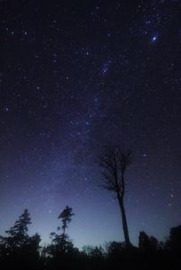 星空の写真素材 [FYI00222191]