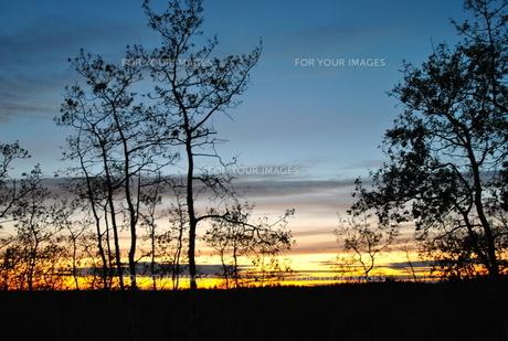 sun setの写真素材 [FYI00222346]