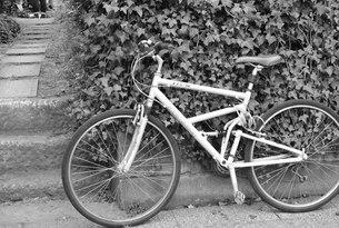 お気に入りの自転車をつれての写真素材 [FYI00222368]