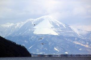 冬の伊吹山 の写真素材 [FYI00222372]
