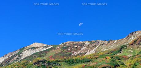紅葉の栂池自然園の写真素材 [FYI00222385]