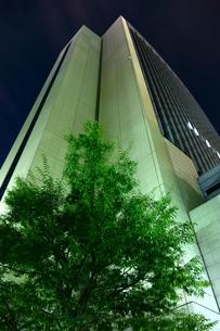 神戸旧居留地オフィスビルの夜景の写真素材 [FYI00222450]