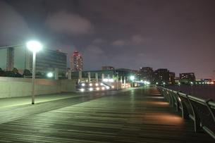 HAT神戸ジョギングコースのライトアップの写真素材 [FYI00222459]