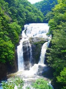 袋田の滝の写真素材 [FYI00222546]