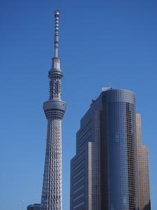 東京スカイツリーの写真素材 [FYI00222594]