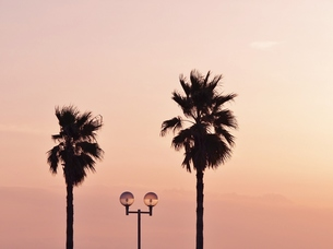 海辺の夕暮れの写真素材 [FYI00222612]