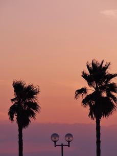 海辺の夕暮れの写真素材 [FYI00222626]