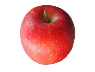 リンゴの写真素材 [FYI00222686]