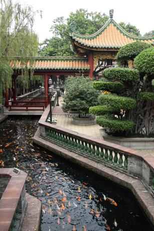 中国・宝墨園 園内風景の写真素材 [FYI00222739]