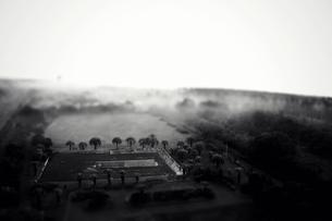 霧朝の素材 [FYI00222923]