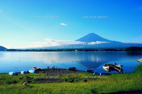 早朝の富士山の素材 [FYI00222942]