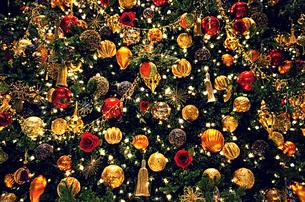 クリスマスツリーの素材 [FYI00222944]