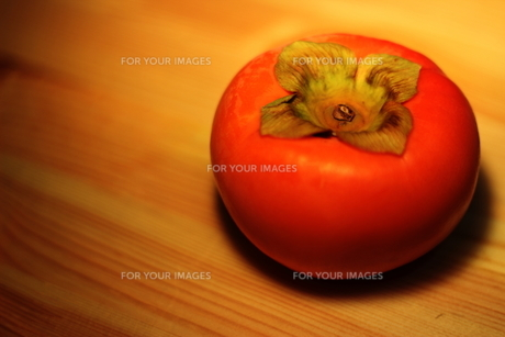 柿の写真素材 [FYI00223121]