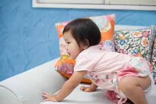 小さい女の子の写真素材 [FYI00223338]