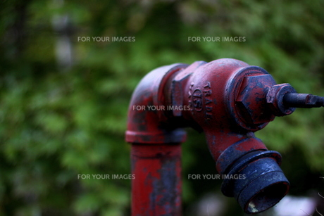 地上式消火栓の写真素材 [FYI00223397]