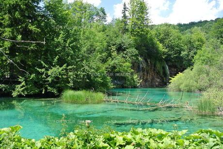 プリトヴィッツェ国立公園湖群の写真素材 [FYI00223467]