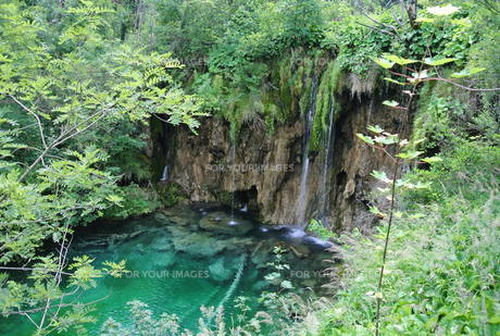 プリトヴィッツェ国立公園湖群の写真素材 [FYI00223482]