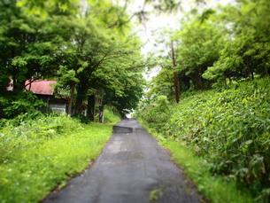 坂道の写真素材 [FYI00223641]