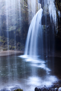 熊本県阿蘇郡小国町の鍋ヶ滝の写真素材 [FYI00224366]