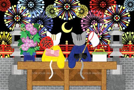 打ち上げ花火と猫のカップルの写真素材 [FYI00224550]