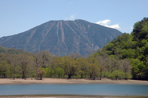 奥日光 西ノ湖から見た男体山と新緑の写真素材 [FYI00225723]