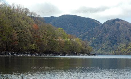 20. 新緑の湖畔にフライ・フィッシャーの写真素材 [FYI00225753]
