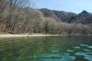 27. 中禅寺湖・春の訪れの写真素材 [FYI00225760]