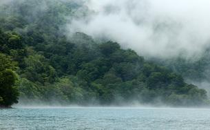 59. 中禅寺湖南岸に掛かるガスの写真素材 [FYI00225784]