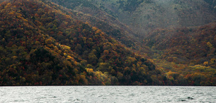 170.中禅寺湖南岸の紅葉 ④の写真素材 [FYI00225875]