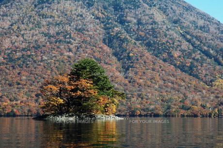 216. 中禅寺湖上野(こうずけ)島の写真素材 [FYI00225926]