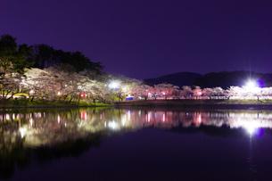 高松の池の夜桜の写真素材 [FYI00226051]