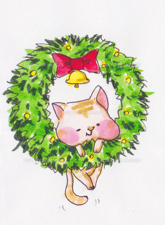 クリスマスリースねこの写真素材 [FYI00226065]