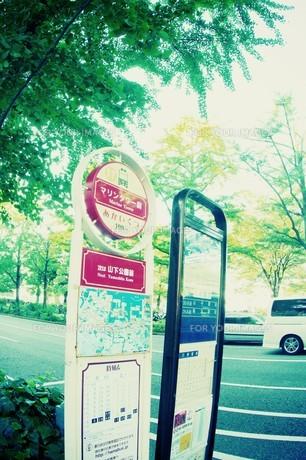 横浜のバス停の素材 [FYI00226122]