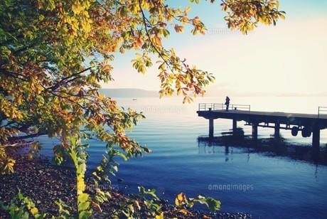 十和田湖の朝の写真素材 [FYI00226160]