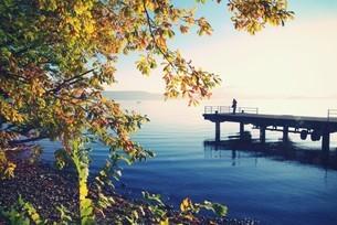 十和田湖の朝の素材 [FYI00226160]