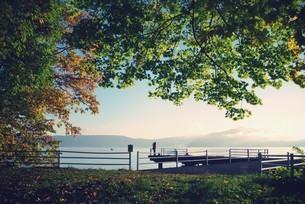 十和田湖畔の写真素材 [FYI00226164]