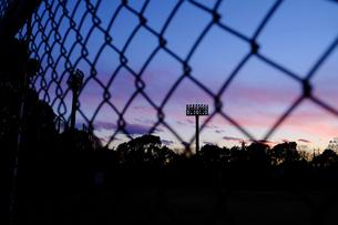 野球場の夕暮れの素材 [FYI00226208]