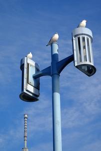 街灯とスカイツリーの素材 [FYI00226219]