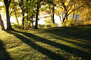 朝日を浴びた湖畔の写真素材 [FYI00226224]
