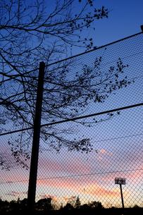 フェンス越し夕景の素材 [FYI00226225]